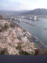 匂ヶ崎公園の櫓から.jpg